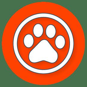 Pet & Animals